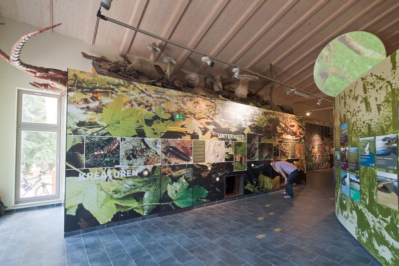 Hainich Forest National Park Centre