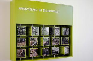STEIGERWALD-ZENTRUM